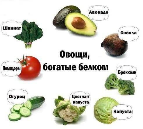 Продукты белковые