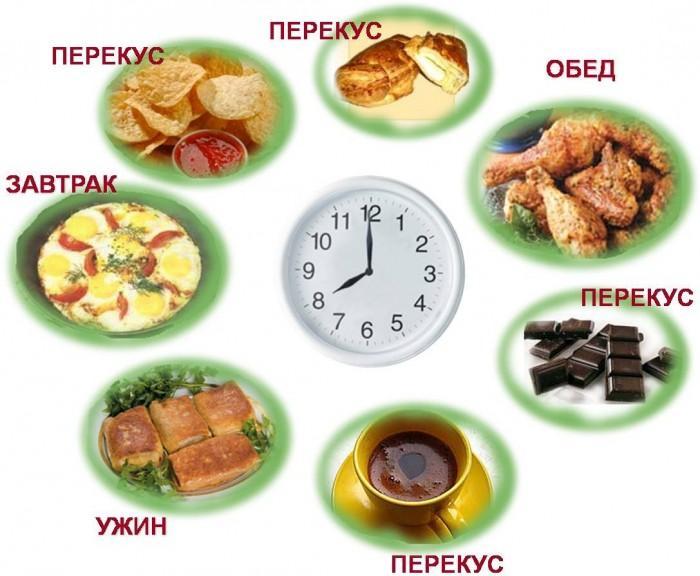Эффективность дробного питания