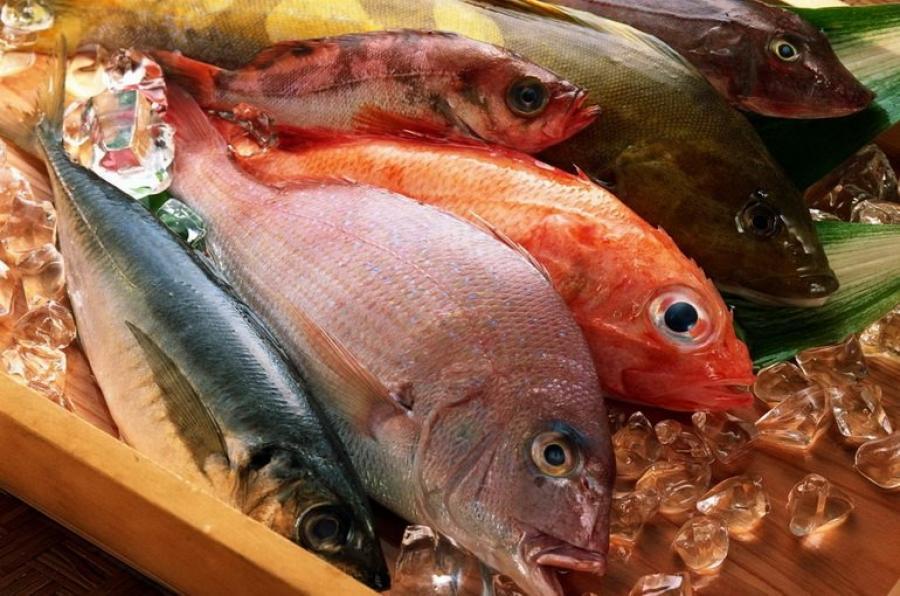 Какую рыбу можно есть?