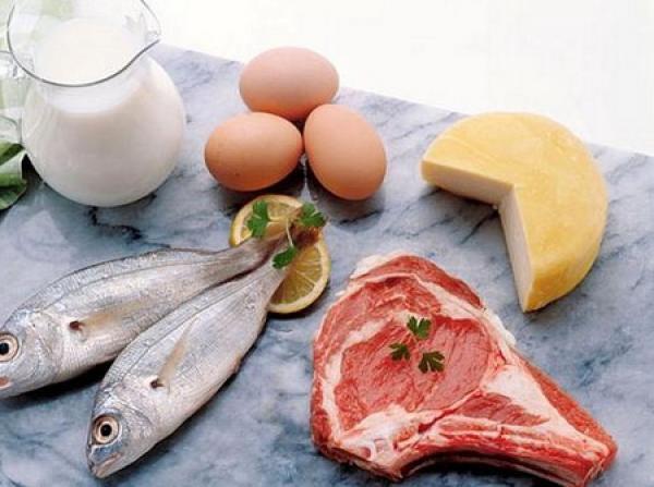 Правильный режим питания при белковой диете